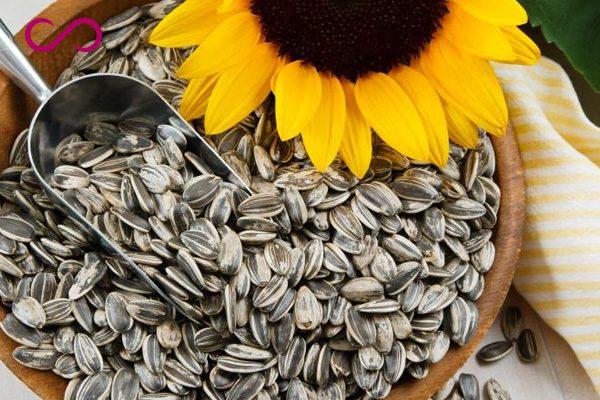 Sunflower Seeds Helps Hair Grow