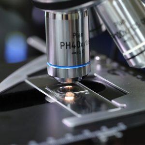 Microscopic Analysis